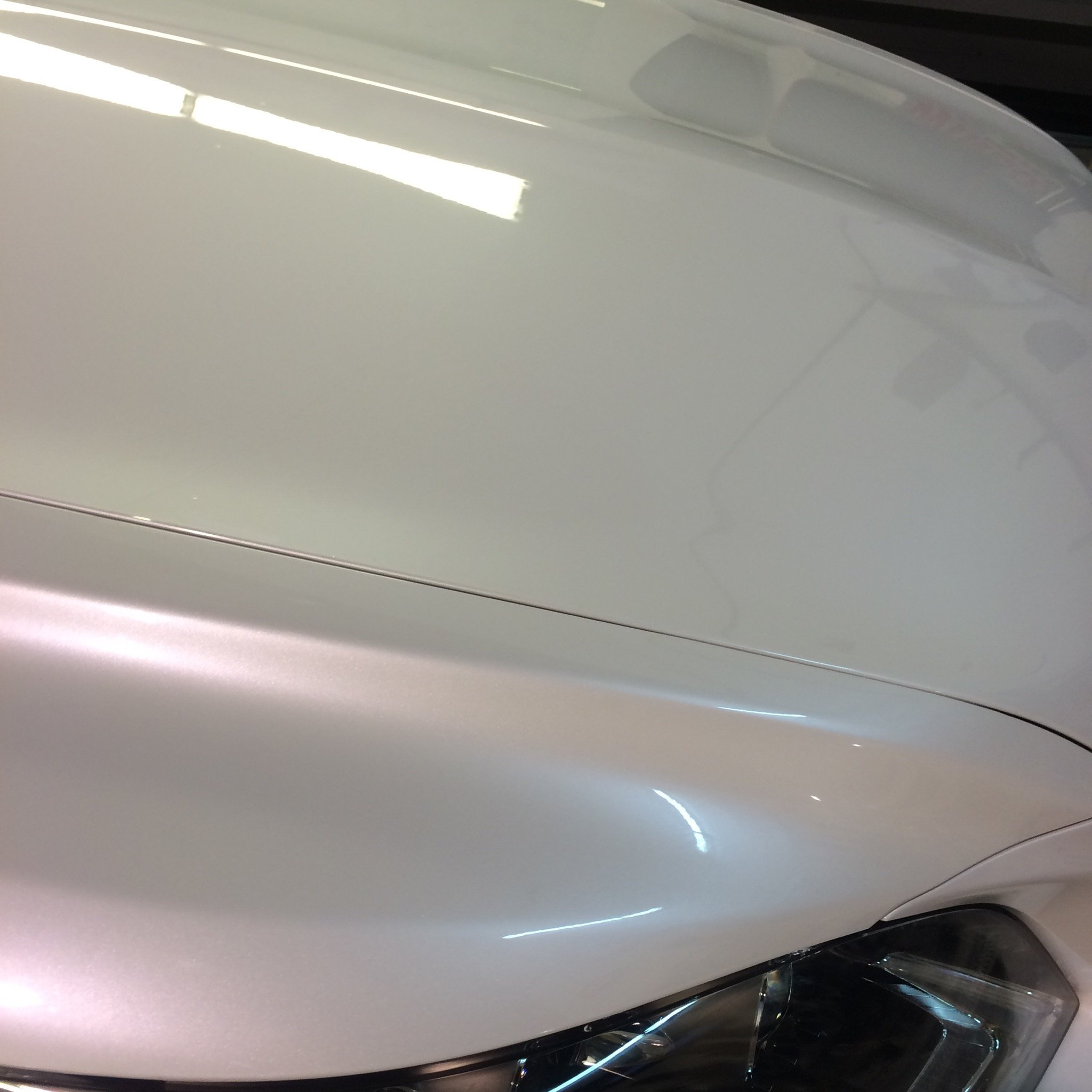 clear bra paint protection